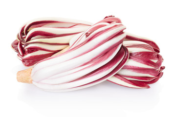 Radicchio, red Treviso salad group on white, clipping path