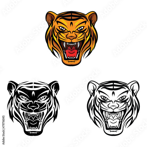 Coloring Book Tiger Face Cartoon Character Stock Image And Royalty