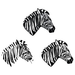 Coloring book Zebra Head cartoon character