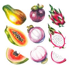 watercolor exotic fruits set