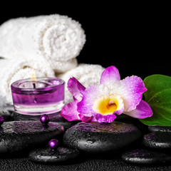 spa concept of orchid flower, zen basalt stones with drops, purp