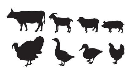 Vector farm animal