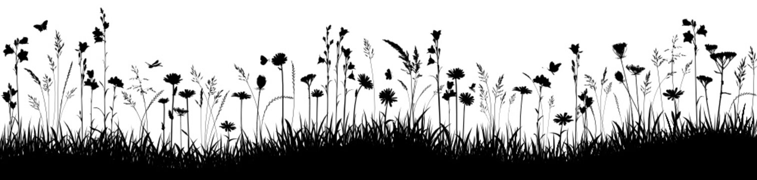 Sommerwiese Vektor