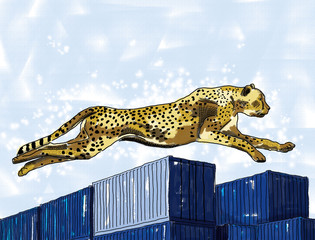 cheetah and container