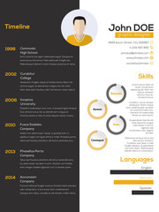 Contrast resume cv design