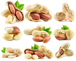 set of peanuts isolated on the white background