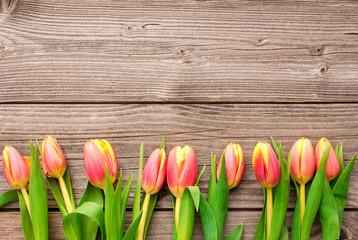Tulpen mit Holzhintergrund