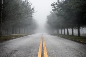 Foggy Morning Road Fototapete