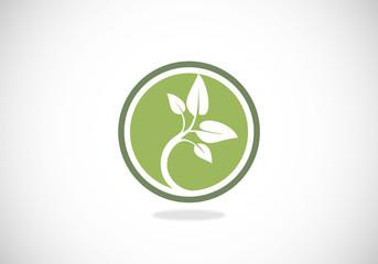 tree seed ecology vector logo