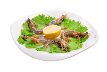 delicious fresh shrimps