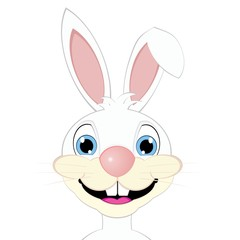 cartoon white bunny