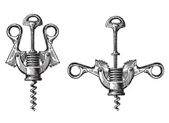 corkscrew on a white background. illustration, sketch