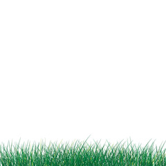 Vector mockup, grass lawn