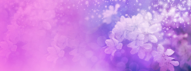 Pink Wedding Blossom website header
