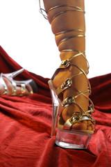 Stöckelschuh aus Acrylglas