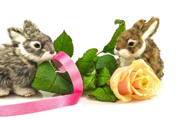 Rabbits with rose and ribbon