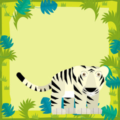 Cartoon frame scene - white tiger - illustration