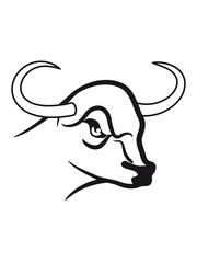 Taurus Taurus zodiac horoscope signs dangerous