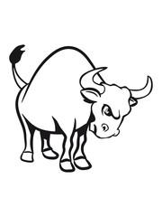 Taurus Taurus Horoscope aggressive