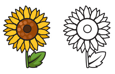 colorful and black and white sunflower for coloring book