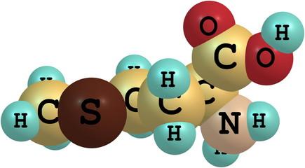 Methionine acid molecule isolated on white