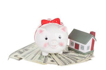 Pig moneybox on money and the toy house