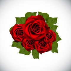 Realistic Rose High Quality Vector Illustration