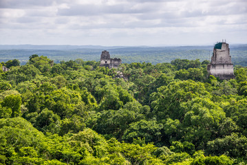 Panoramic View of rainforest and Mayan Ruins . Tikal National Pa