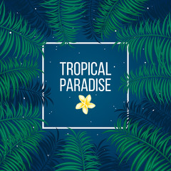 Tropical starry night paradise background template
