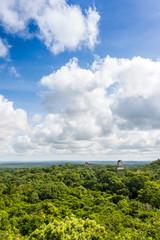 Panoramic View of rainforest and Mayan Ruins . Tikal National Pa