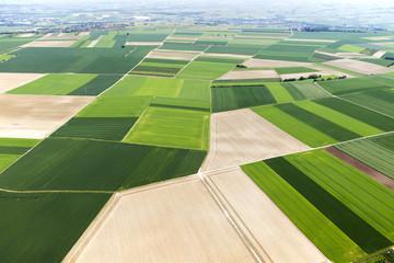 Deutschland, Rheinland-Pfalz, Ingelheim, Blick auf Felder, Landschaft, Luftbild Fotoväggar