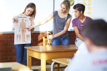 Studierende, Anatomie-Präsentation