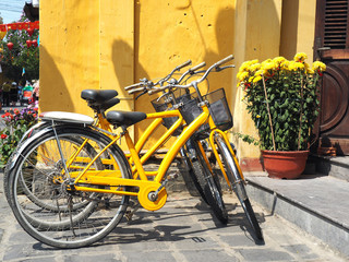 yelow bike and flower