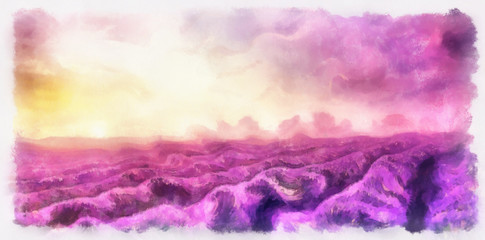 aquarrell painting of lavender fields on canvas.Sunset landscape