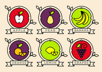 Set of Linear Fruits  Vector Icon