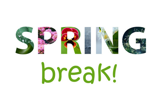 The words spring break made of colorful spring images