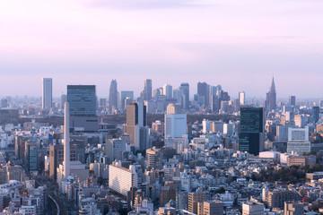 東京都市風景 渋谷と新宿高層ビル群を望む 夕陽があたる