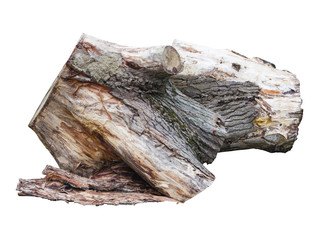 Old wooden stump log isolated over white