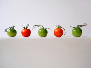 Green and red tomatoes in a row.