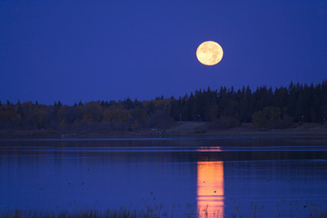 A full moon in the night sky reflected in the waters of a lake.