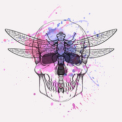Poster Aquarel Schedel Vector grunge illustration of human skull and dragonfly with watercolor splash