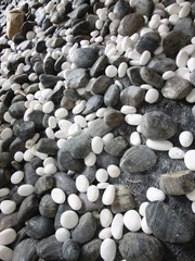 Various size of pebble stones Texture Background