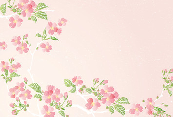 Vector illustration of Cherry blossom flowers with leaves