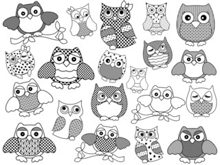Amusing and funny owls, black outlines