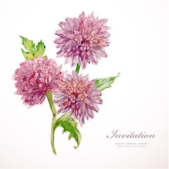 Invitation card with watercolor flowers. chrysanthemum. vector i