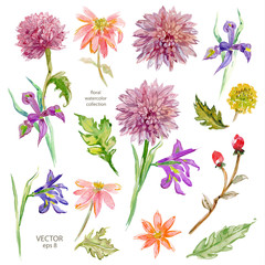 Spring floral collection. watercolor beautiful flowers. vector i