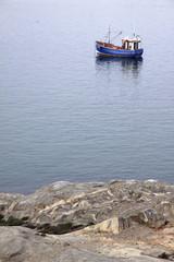 Baot in Harbour