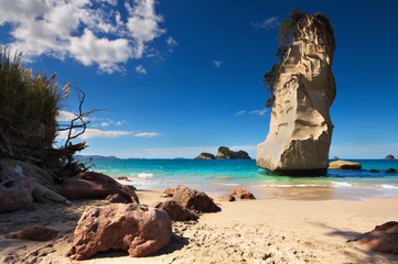 Foto auf Acrylglas Cathedral Cove Cathedral Cove, Coromandel Peninsula, North Island, New Zealand