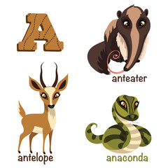 Alphabet animals. Anteater, anaconda, antelope.