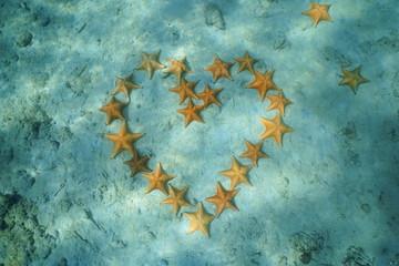 Group of starfish in heart shape underwater